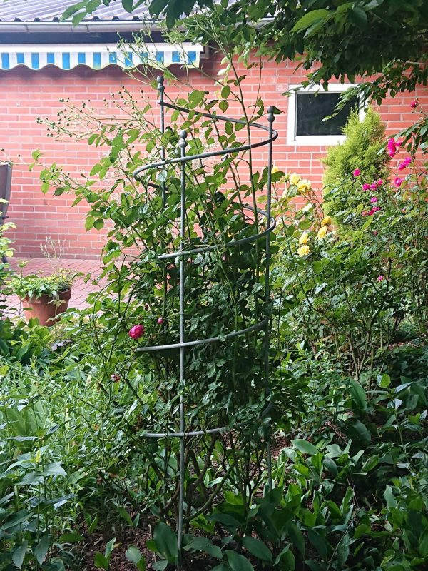 Beispiel für eine Rosenrankhilfe